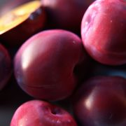 VP_Plums_feature_600x600
