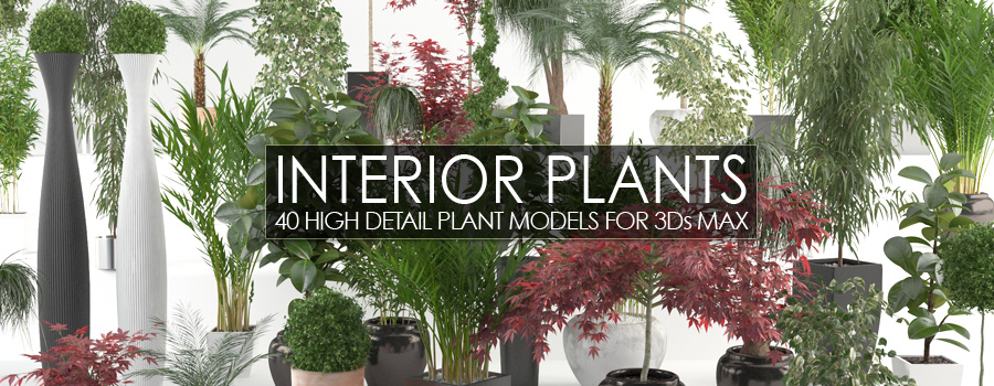 Interior Plants Bundle
