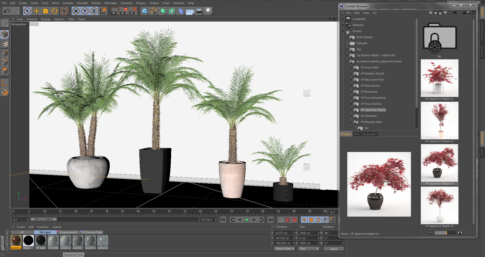 Interior Plants - CINEMA 4D content browser