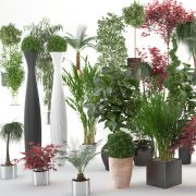 VP-Interior-Plants-all-FEATURE