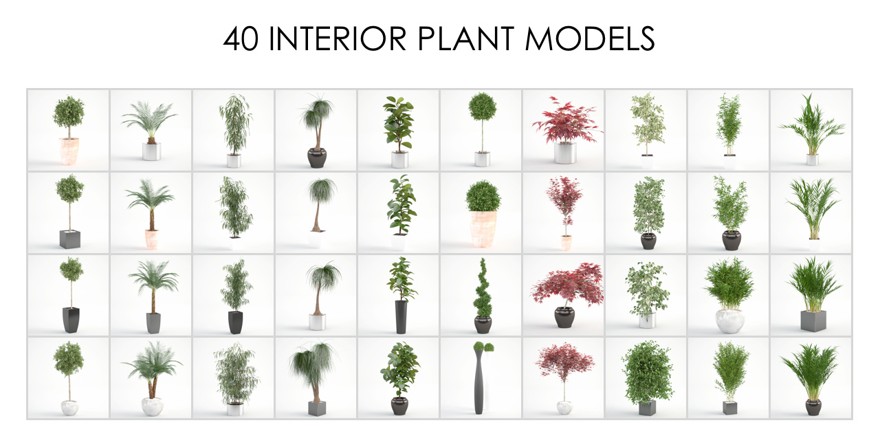 All 40 Interior Plant 3D models