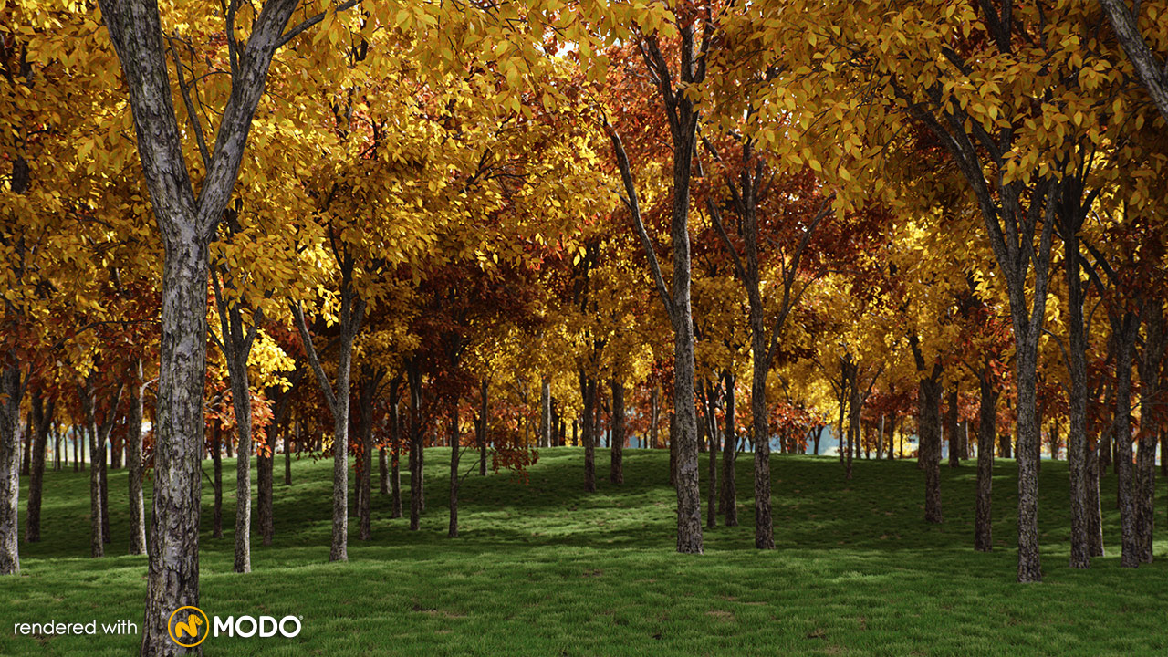 VP-Quercus-Aliena-MODO