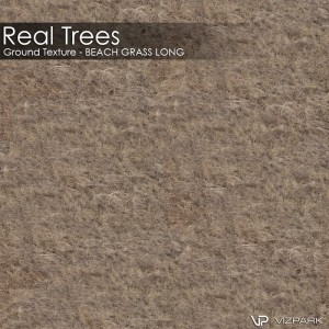 Real Trees Ground Texture - Beach Grass