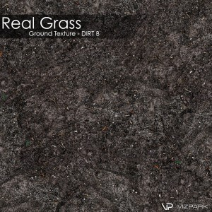Ground Texture - Dirt B
