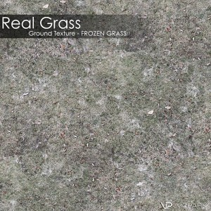 Ground Texture - Frozen grass