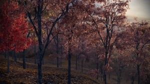 FPP preset - Autumn Trees