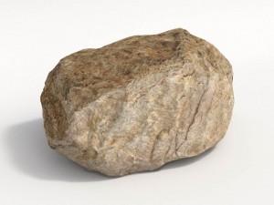 Boulder Limestone B