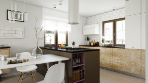 VP_Plywood_Kitchen_by_Thomas_Sciskala-02