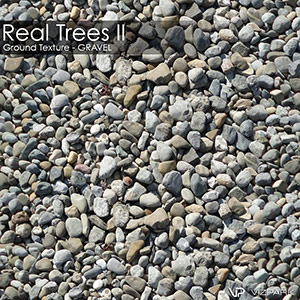 Real Trees Ground Texture - Gravel