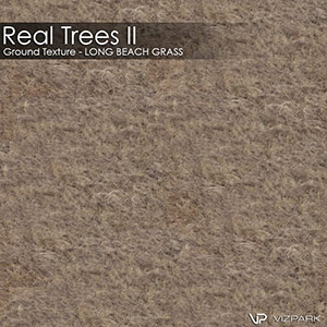 Real Trees Ground Texture - Long Beach Grass