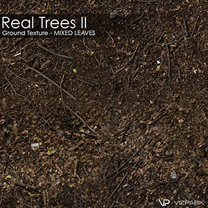 Real Trees Ground Texture - Mixed Leaves
