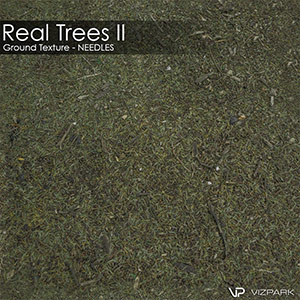 Real Trees Ground Texture - Needles