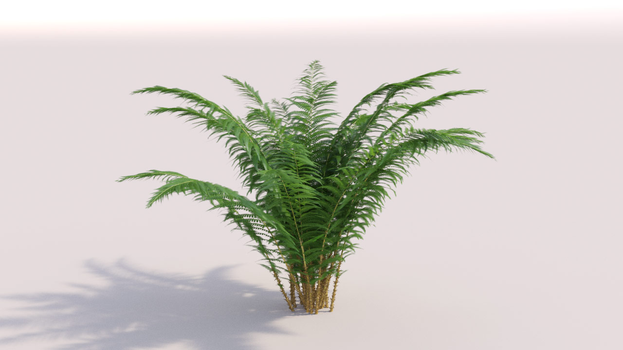 PLANTS Complete - 3D models of grass, shrubs, trees and flowers